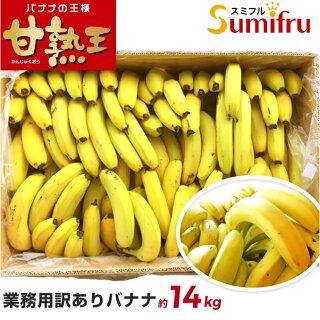 カブトムシはバナナが好き?