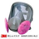 防塵マスク兼防毒マスク 3M(スリーエム) 6000F/2091-RL3全面体アスベスト・ダイオキシン防塵対応