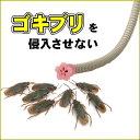 防虫 ゴキブリ 害虫侵入阻止 エアコン排水ホース用防虫キャッ...
