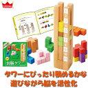 パズル 学習トイ エドインター 知の贈り物シリーズ 育脳タワー 4941746812327 知育玩具 知育 パズル おもちゃ 知育パズル 1歳 1歳半 2歳 3歳 4歳 5歳 幼児 木のパズル 木製パズル 子供 赤ちゃん ベビー