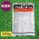 芝生 殺菌剤 ベンレート水和剤 500g 3086331