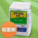 芝生 殺菌剤 グラステン1kg 3122373【あす楽対応】