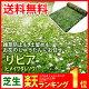 雑草防止も、土留めも、お花のじゅうたんにお任せ。花マット リ...