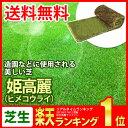 芝生 姫高麗(ヒメコウライ) ロール巻芝 送料無料 (芝 通販)