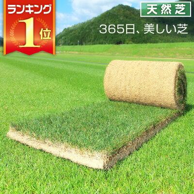 三種混合ロール巻芝