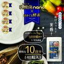 Nano10kai_1