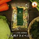 『九州ドライベジ』100g×1袋(お湯で戻して約500g)九州産乾燥野菜ミックス ゆうパケット・代引不可 (※代引きはゆうパケット対象外)【出荷目安:ご注文後1〜2週間】・・・
