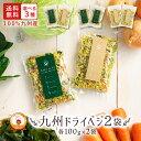 【SALE】送料無料 国産 乾燥野菜 ミックス 九州ドライベジ100g×2袋(お湯で戻して約1kg)ゆうパケット(ポスト投函)・代引不可 【出荷目安:ご注文後1〜2週間】・・・