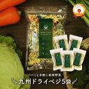 [SALE+ポイント2倍]送料無料 国産 乾燥野菜 ミックス 九州ドライベジ 100g×5袋セット(お湯で戻して約25...