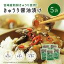 【メール便送料無料】菊池食品 九州の逸品 高菜油炒め 300g×2袋まとめ買いセット