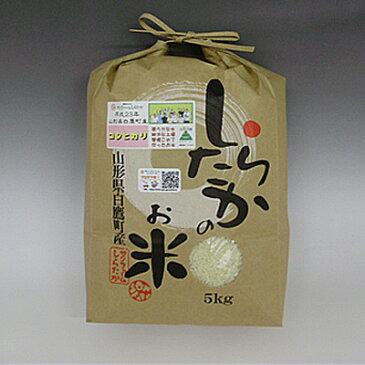 【令和元年産】【山形県白鷹産】 甘いコシヒカリ 白米30kg【農家直送】【10kgずつに小分けサービス致します。】