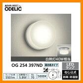 LED 照明 LED ポーチライト OG 254 397ND LEDライト 外灯 屋外 門灯 ODELIC オーデリック 送料無料