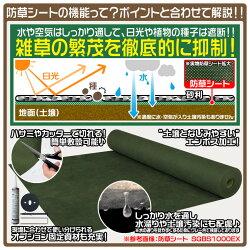 防草シート/固定資材/ボナタイト(缶)/防草シートのポイント