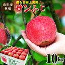 山形県産 遅もぎ収穫樹上完熟サンふじ林檎約10kg(24〜4...