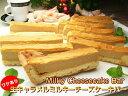 チーズケーキ 訳あり 生キャラメル・ミルキーチーズケーキバー500g