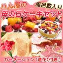 【あす楽】ハム屋の母の日ケーキギフトセット!送料無料【母の日...