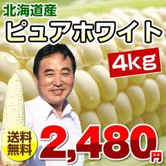 とうもろこし/ピュアホワイト/約4kg/北海道産/スイートコーン/【送料無料】/トウモロコシ/とう...