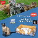 猫 ベッドスクエアベッド 【ネコリパ コラボ商品】 ( マトロスキンペット )ねこ ペットベッド / 犬猫兼...