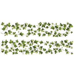 ウォールステッカー*フラワー&リーフ「ペインテラリーアイビー」■シールはがせる花葉フローラルエレガントルームメイツ
