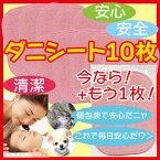 日本製 ゲットダニ誘引 ダニシート10枚セット 1枚おまけ コットン100% 合計11枚セット置くだけで簡単 赤ちゃん  ダニ シート ダニシート ダニ捕りマット ダニ捕りシート ダニよせゲット ゲットダニよせ 梅雨 ペット 送料無料