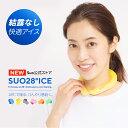 小林製薬 Kobayashi 冷凍庫用 熱さまシートストロング 大人用 12枚