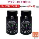 メーカー直営店【送料無料】[2個セット]アサイー100(90粒入)
