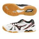 卓球 シューズ 靴 メンズ レディース キッズ ジュニア 大人 子供 中学生 高校生 大学生 社会人 部活 体育館シューズASICS アシックス