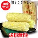 白糯玉米棒【10袋セット】冷凍とうもろこし 備蓄食 1袋に2本入 粘玉米 ワキシーコーン