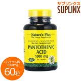 パントテン酸 (ビタミンB5) 1000mg (タイムリリース型) 60粒[サプリメント/健康サプリ/サプリ/ビタミン/パントテン酸/Nature'sPlus/ネイチャーズプラス/栄養補助/栄養補助食品/サプリンクス/] ビタミンB5・パントテン酸
