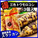 ★三/五色トウモロコシ3個入★