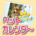 【送料無料】オーダーメイド 写真入り 卓上カレンダー犬,猫,インコ,写真を撮ったらオリジナルグ...