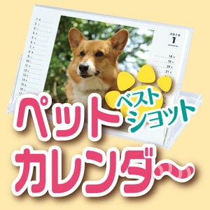 【送料無料】オリジナル フォト ペット カレンダー (1冊)☆写真でオーダーメイ…