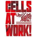 DVD/はたらく細胞 Vol.1 (DVD+CD) (完全生