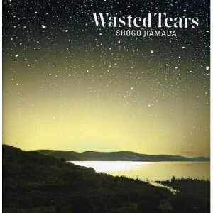 CD/WASTED TEARS (ハイブリッドCD/ConnecteD)/浜田省吾/SECL-10002
