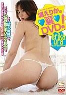 【中古】アイドルDVD 浦えりか/裏 DVD【10P10Apr12】【画】【b0322】【b-dvd】