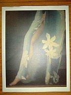 【中古】女性アイドル写真集 Ayako Fuji A Portrait By Yoshihiko Ueda / 上田義彦【10P13Dec...