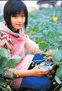 【中古】コレクションカード(女性)/トレカ/雑誌「pure×2」Vol.35付録トレカ 348 : 橋本甜歌/雑誌「pure×2」Vol.35付録トレカ
