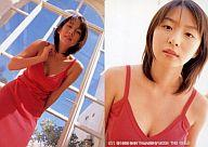 トレーディングカード・テレカ, トレーディングカード ()SHIN YAMAGISHI TRADING PHOTOCARD COLLECTION 011 SHIN YAMAGISHI TRADING PHOTOCARD COLLECTION
