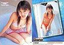 【中古】コレクションカード(女性)/YC PREMIUM CARD2005 113 : 浜田翔子/YC PREMIUM CARD2005