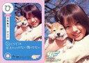 【中古】コレクションカード(女性)/CD「理由」特典 ひ : 安倍麻美/CD「理由」特典