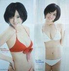 【中古】ポスター(女性) BIGお風呂ポスター 山本彩(NMB48) ヤングアニマル2013年2号特別付録