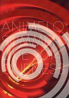 エンターテインメント, アニメーション 1071101:59 ) ANIMELO SUMMER LIVE 2014 ONENESS (DVDCD) afb