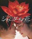 【中古】パンフレット(邦画) パンフ)シャニダールの花