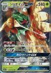 【中古】ポケモンカードゲーム/RR/サン&ムーン 強化拡張パック サン&ムーン 003/051 [RR] : (キラ)ジュナイパーGX