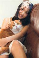 【中古】ポストカード(女性) 菅井友香/猫抱き(欅坂46) スペシャルポストカード 「1st写真集 フィアンセ」 封入特典