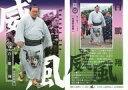 【中古】BBM/レギュラーカード/威風/BBM2019 大相撲カード「風」 43 [レギュラーカード] : 白鵬 翔