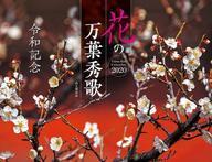 【中古】カレンダー 令和記念 花の万葉秀歌 2020年度カレンダー