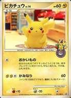 トレーディングカード・テレカ, トレーディングカードゲーム P101 101DP-PPB