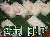 笹寿司シロエビ