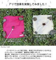 蟻に対する効果実験